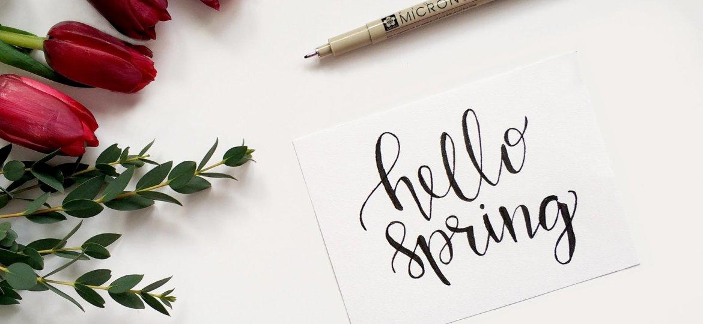 ToeDrue_Spring_2